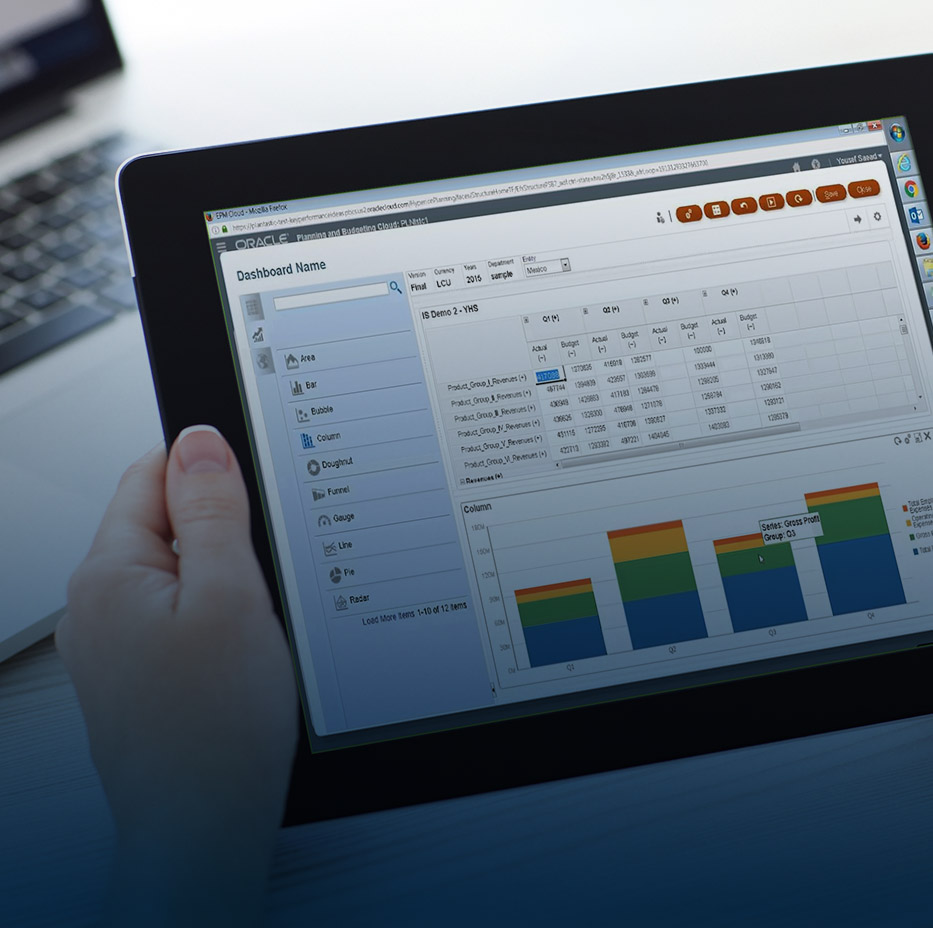 Bart & Partners_Functional Application Management (FAM)